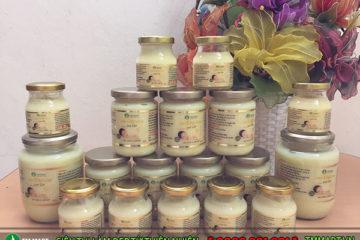 Tìm hiểu giá bán sữa ong chúa tươi nguyên chất